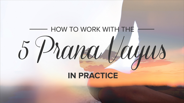 how to work with the 5 prana vayus in practice jeanne heileman